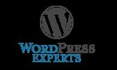 WP-Experts-1